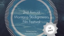 Montana Stockgrowers 2013 Film Festival Logo