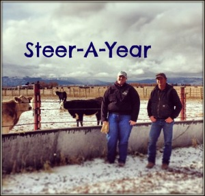 Montana State Steer-A-Year Dusty Hahn