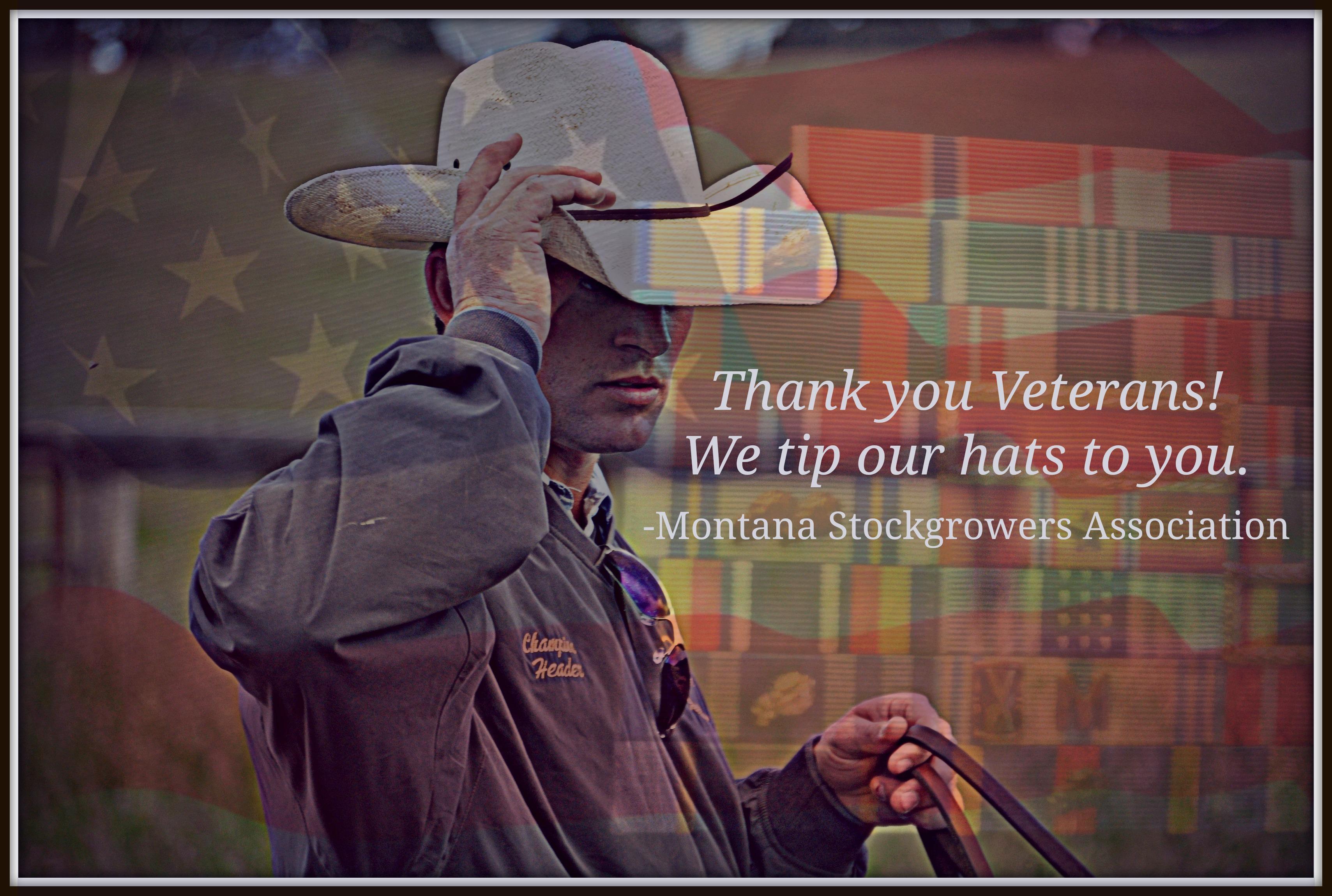 Cowboy Salute to Veterans Day 2013 c0ebdcbb6
