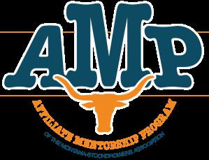 Affiliate Mentorship Program