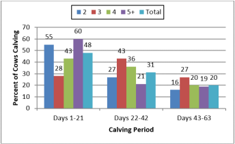 Chart calving period for reproductive performance