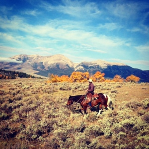 Kayla Sandru captured some great photos in the Ruby Valley as her family brings the cattle down for the fall season.